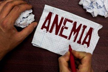 Vérszegénység: autoimmun eredetű is lehet