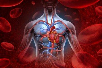 Vasculitis – autoimmun eredetű is lehet