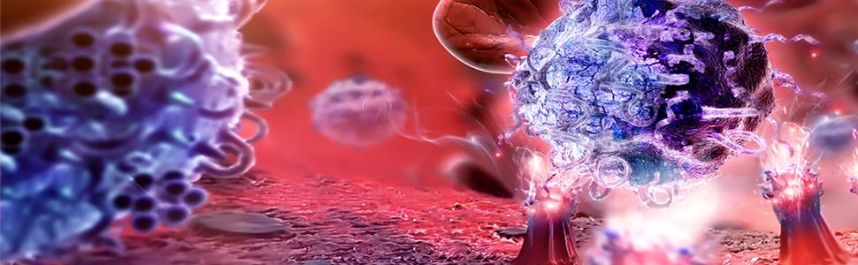 Immunológia