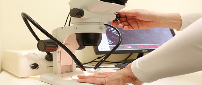 Kapillármikroszkópos vizsgálat